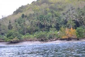 mercredi 14 août 2013 : Nusa Lembongan (suite 1) dsc_04312-300x200