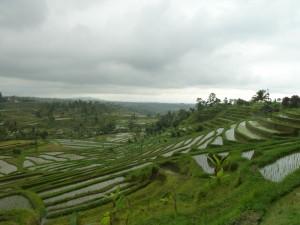 jeudi 8 août : Les lacs du nord et les rizières en terrasses (suite 2) p1030434-300x225